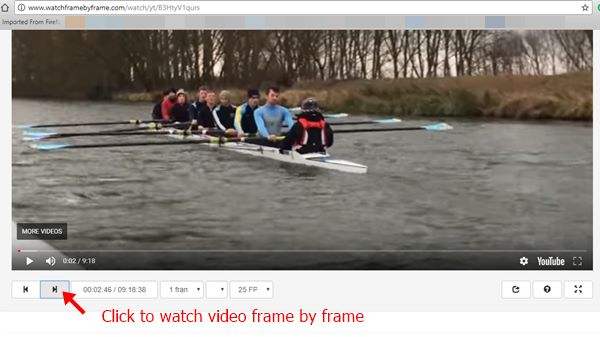 Click on the Step forward icon to watch video frames